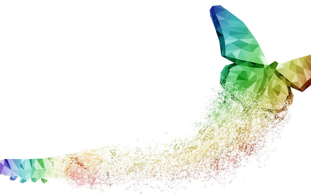 Mit emotionaler Intelligenz und Kreativität kraftvoll in die Transformation